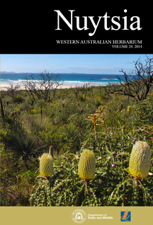 The stunning coastline of Cape Arid National Park on the south coast of Western Australia, featuring the iconic Showy Banksia (Banksia speciosa R.Br.). The Park contains more than 1000 native vascular plant taxa including 55 that are rare or poorly known, and more than 30 that have been scientifically described in the past 15 years. Important taxonomic research in this and other parks—25 potential new taxa in this park alone are the subject of ongoing taxonomic research—underpins conservation in Western Australia's conservation estate. (Photograph Juliet Wege, October 2011.)